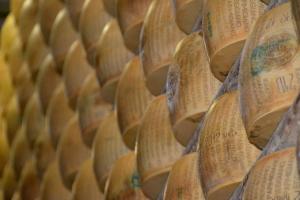 Parmesaanse Kaas - gratis fotos bij Hands-On Advies